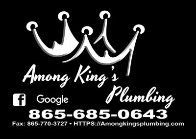 Among Kings Plumbing Business Card
